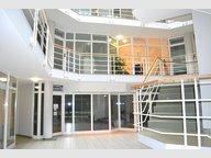 Bureau à louer à Steinsel - Réf. 5077316