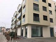 Bureau à louer à Luxembourg-Centre ville - Réf. 5000260