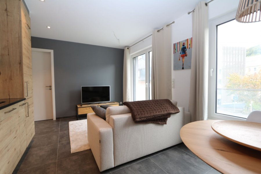 acheter appartement 2 chambres 53 m² luxembourg photo 5