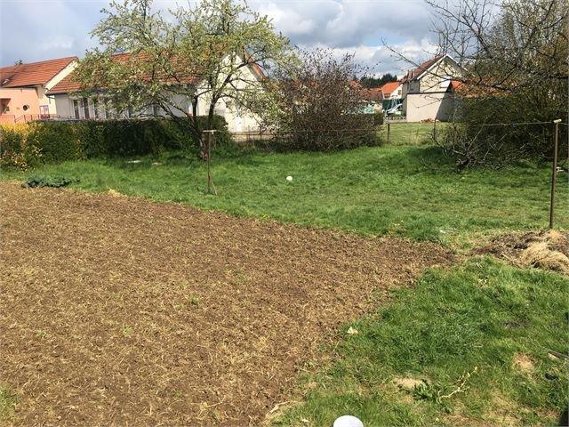 acheter terrain constructible 0 pièce 0 m² mercy-le-bas photo 3