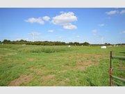 Terrain constructible à vendre à Villers-le-Bouillet - Réf. 6553956