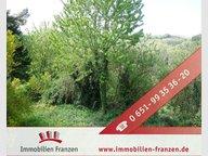 Terrain constructible à vendre à Hinzenburg - Réf. 6358116