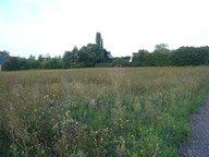 Terrain à vendre à Doué-la-Fontaine - Réf. 5011812