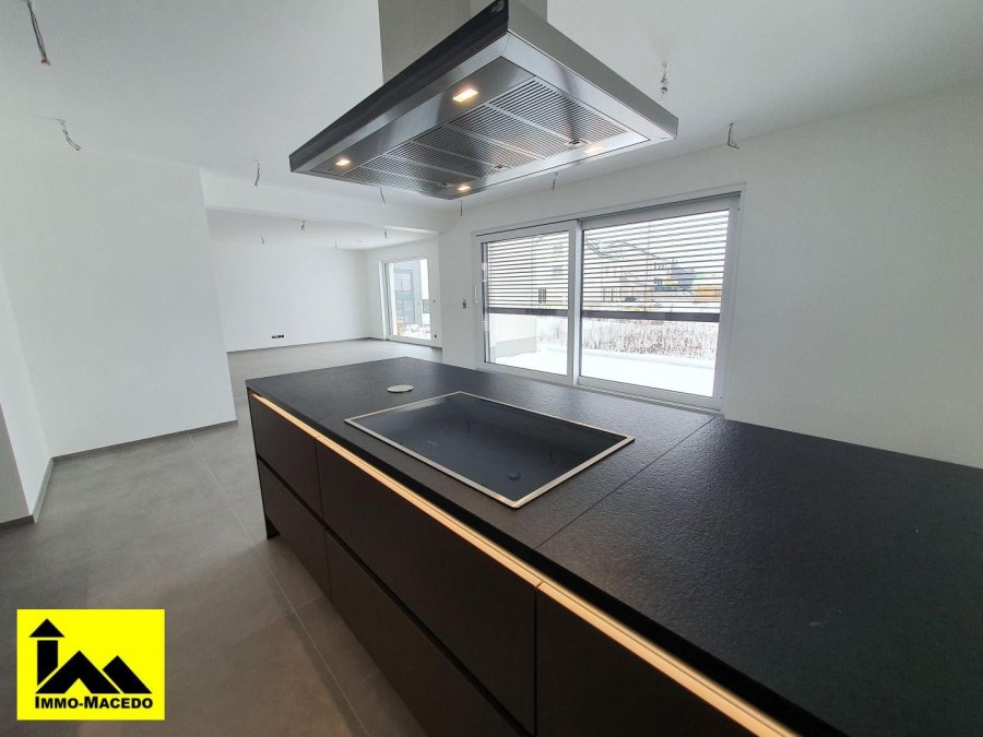 acheter maison individuelle 4 chambres 253 m² schandel photo 5
