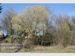 Terrain constructible à vendre à Fresnois-la-Montagne - Réf. 6448244