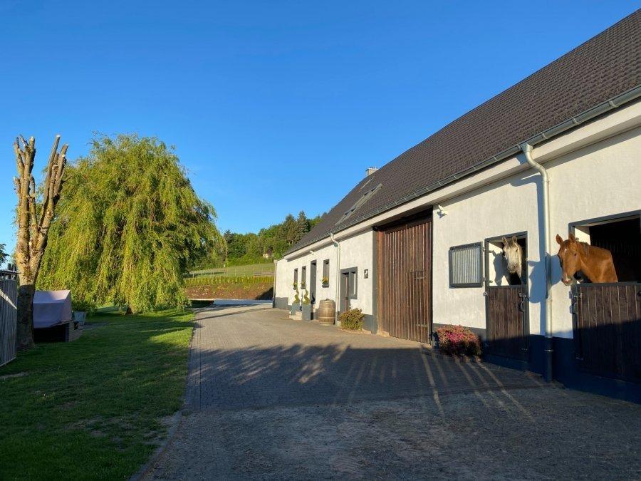 acheter corps de ferme 15 pièces 113 m² hattgenstein photo 7
