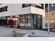 Local commercial à louer à Luxembourg-Neudorf - Réf. 6216564