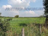 Terrain constructible à vendre à Combles-en-Barrois - Réf. 3408004