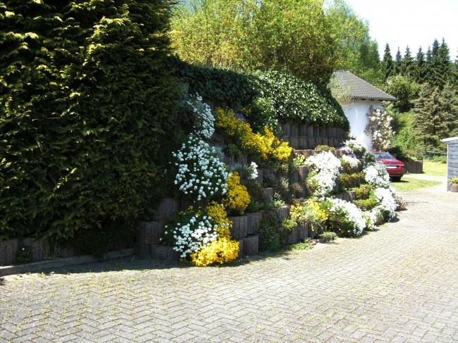 acheter maison 7 pièces 171 m² usch photo 1