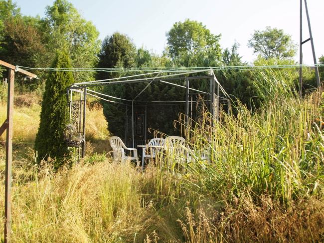 einfamilienhaus kaufen 8 zimmer 300 m² bollendorf foto 6