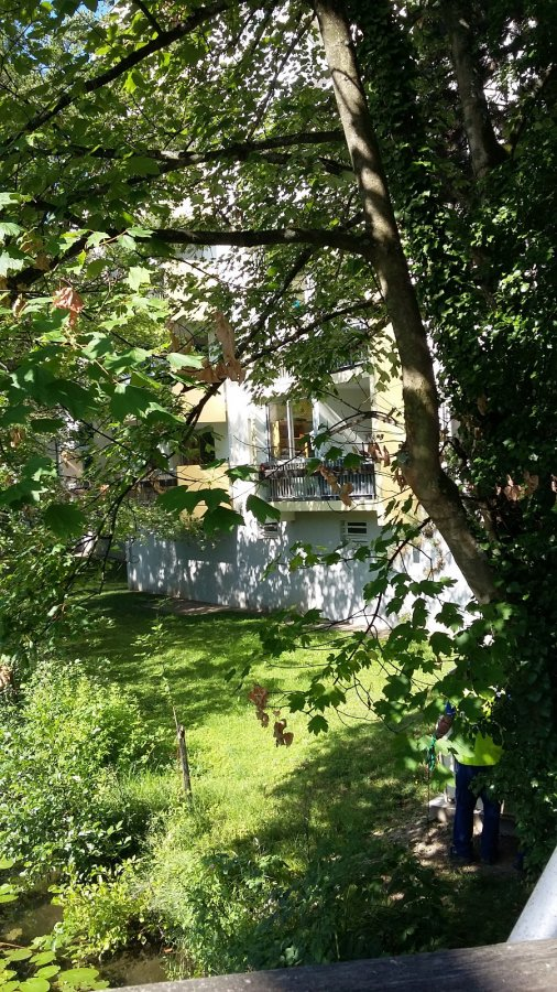 louer appartement 2 pièces 33 m² illkirch-graffenstaden photo 1