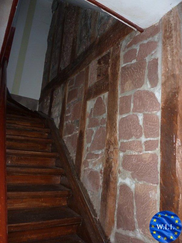 acheter maison 15 pièces 350 m² la petite-pierre photo 3