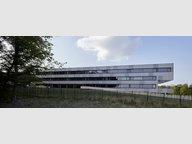Entrepôt à louer à Kockelscheuer - Réf. 7178388