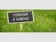 Terrain constructible à vendre à Farschviller - Réf. 6995348