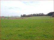 Grundstück zum Kauf in Bitburg - Ref. 5165476