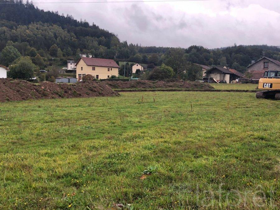 acheter terrain constructible 0 pièce 900 m² saint-nabord photo 1