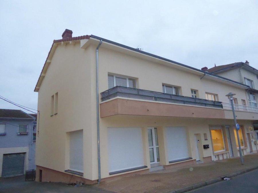 acheter immeuble de rapport 11 pièces 225 m² piennes photo 1