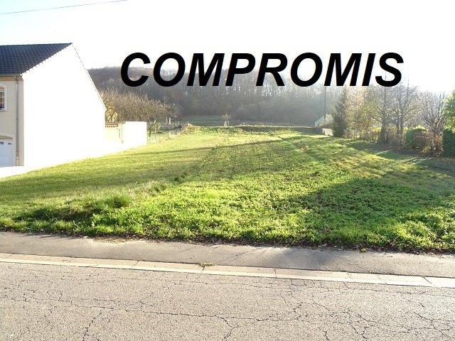 acheter terrain constructible 0 pièce 0 m² manderen photo 1