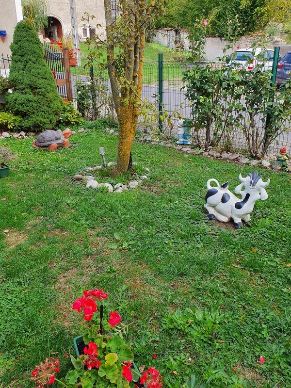acheter maison 6 pièces 170 m² vittel photo 7