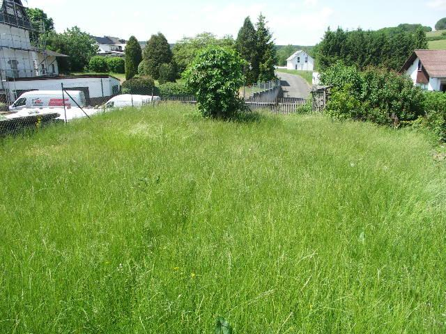 building land for buy 0 room 0 m² daun photo 1