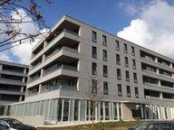 Bureau à louer à Luxembourg-Kirchberg - Réf. 4974276