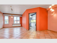 Appartement à vendre 2 Chambres à Esch-sur-Alzette - Réf. 6536388
