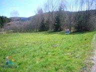 Terrain constructible à vendre à Gérardmer - Réf. 6105812