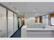Bureau à louer à Luxembourg-Merl - Réf. 6106068
