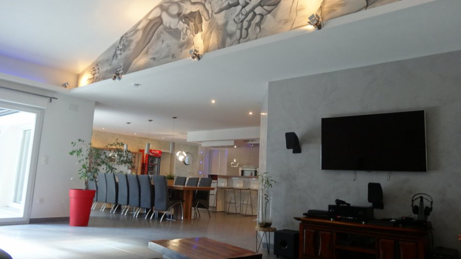 acheter maison 10 pièces 348.59 m² freyming-merlebach photo 1