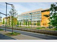 Bureau à louer à Luxembourg-Kirchberg - Réf. 6538980