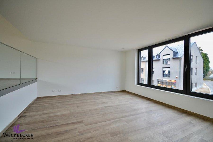 louer maison individuelle 4 chambres 240 m² canach photo 4