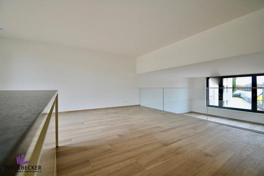 louer maison individuelle 4 chambres 240 m² canach photo 5