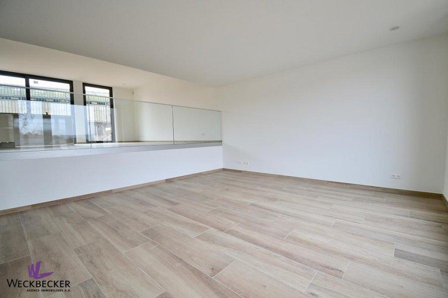 louer maison individuelle 4 chambres 240 m² canach photo 3