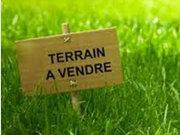 Terrain constructible à vendre à Port-Saint-Père - Réf. 6605540
