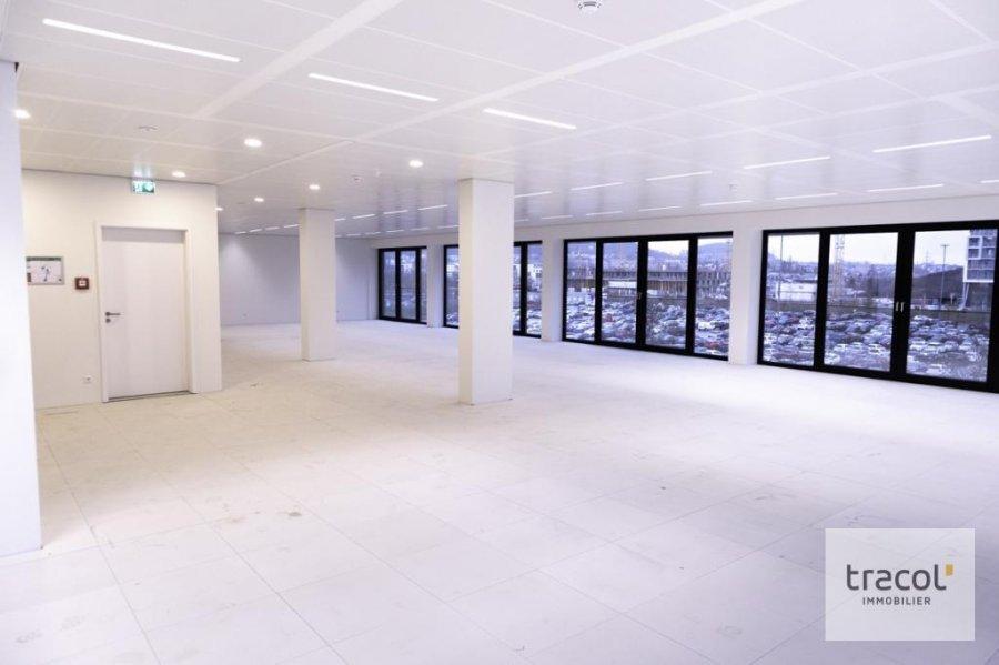 acheter bureau 0 chambre 281.67 m² belval photo 2