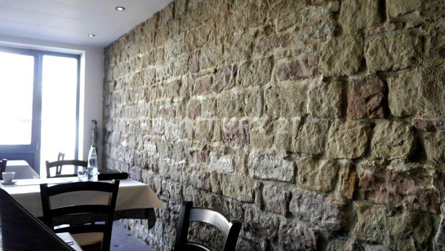 louer restaurant 0 pièce 0 m² saarlouis photo 5