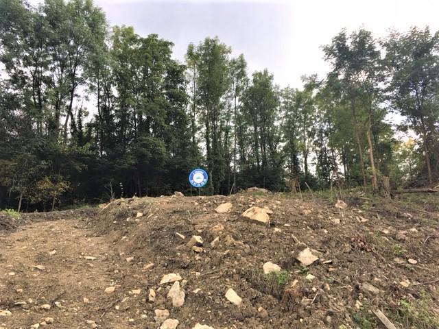 acheter terrain constructible 0 pièce 568 m² bouzonville photo 1