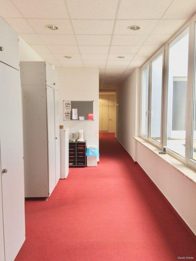 büro mieten 0 schlafzimmer 250.1 m² wecker foto 3
