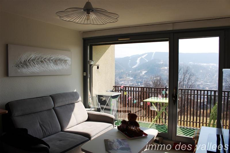 acheter appartement 1 pièce 20.08 m² gérardmer photo 5