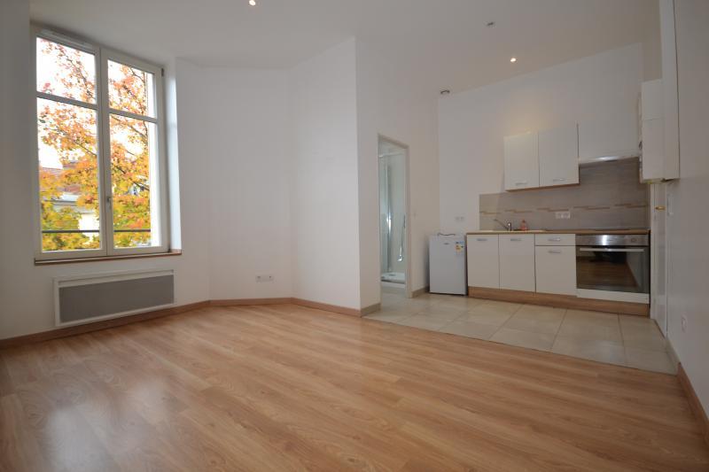louer appartement 1 pièce 22 m² nancy photo 6