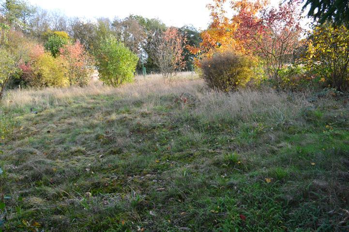 acheter terrain constructible 0 pièce 0 m² hastière photo 4
