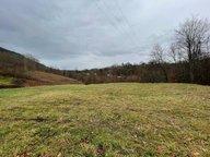 Terrain constructible à vendre à Saint-Dié-des-Vosges - Réf. 7068421