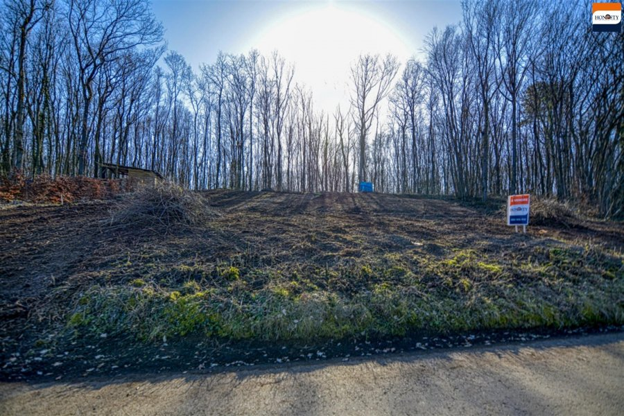 acheter terrain constructible 0 pièce 0 m² beauraing photo 7