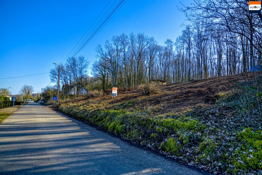 acheter terrain constructible 0 pièce 0 m² beauraing photo 5