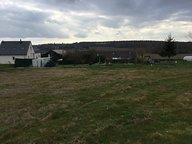 Terrain à vendre à Bauné - Réf. 5082133