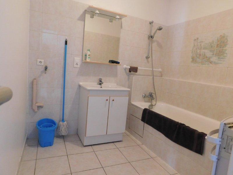 acheter immeuble de rapport 0 pièce 395 m² gerbéviller photo 4