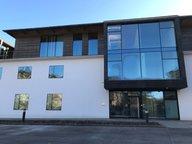 Bureau à louer à Esch-sur-Alzette - Réf. 6740773