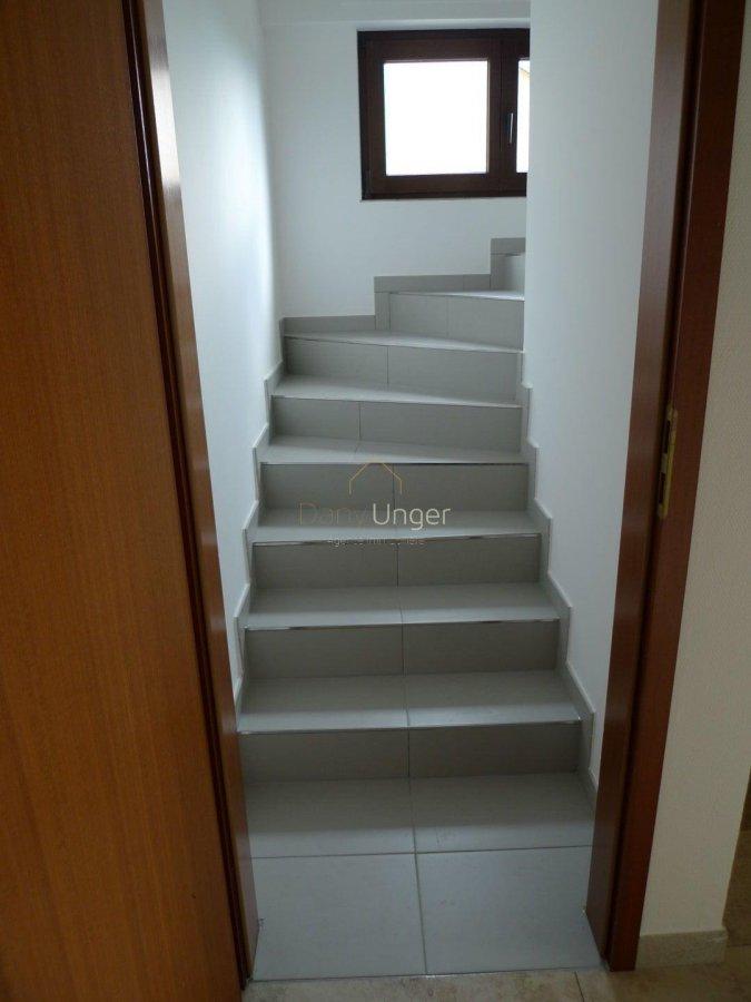 louer maison 4 chambres 300 m² bertrange photo 3