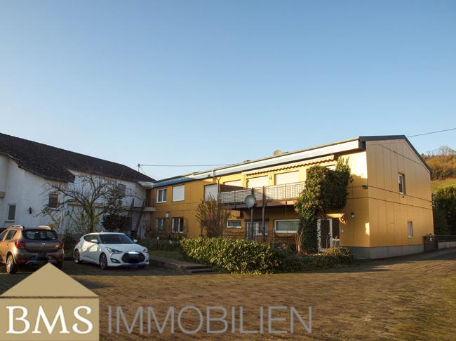 investment building for buy 0 room 1085 m² echternacherbrück photo 1