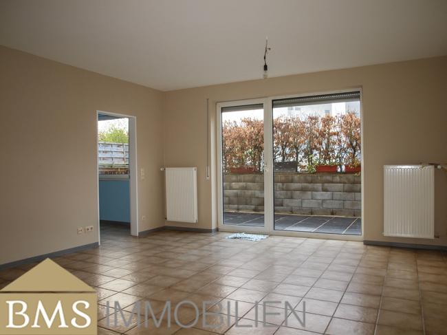 investment building for buy 0 room 1085 m² echternacherbrück photo 3